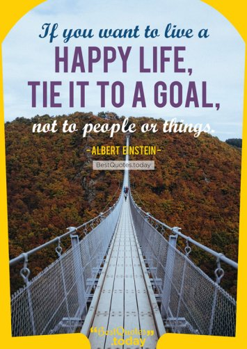 Goal And Life Quote by Albert Einstein