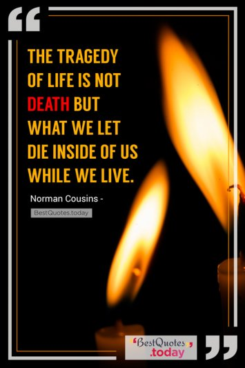 Life Quote by Norman Cousins