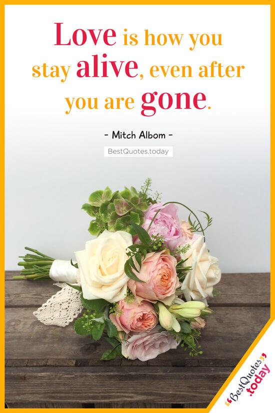 Love & Death Quote by Mitch Albom