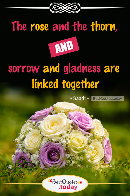 Together Quote by Saadi
