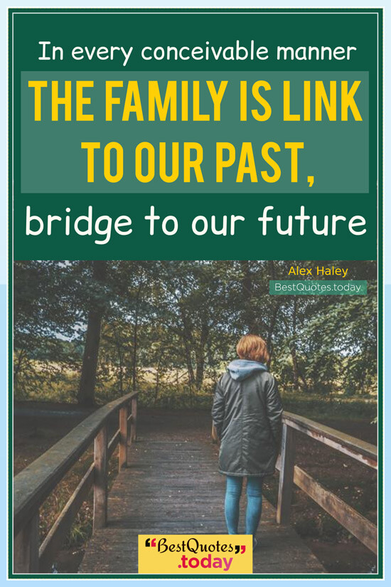 Family Quote by Alex Haley
