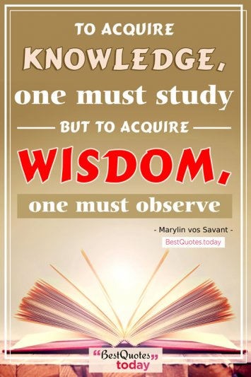 Wisdom & Knowledge Quote by Marylin vos Savant