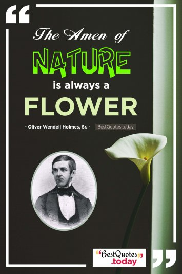 Nature Quote by Oliver Wendell Holmes, Sr.